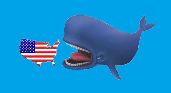 whale-usa-3d