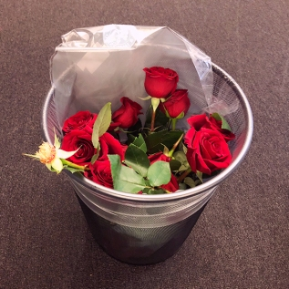 roses in the trash